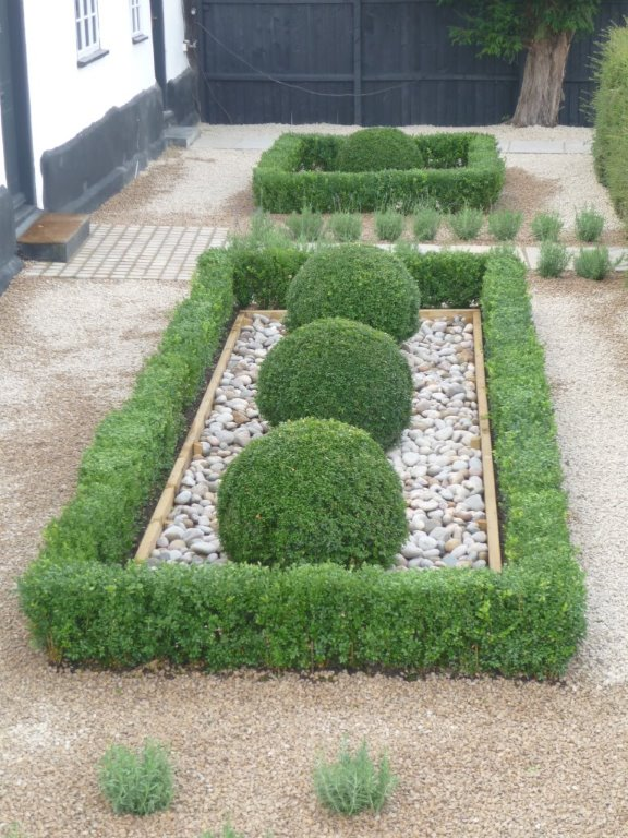 Topiary box hedge & sphere's with cobbles, private garden Cambri