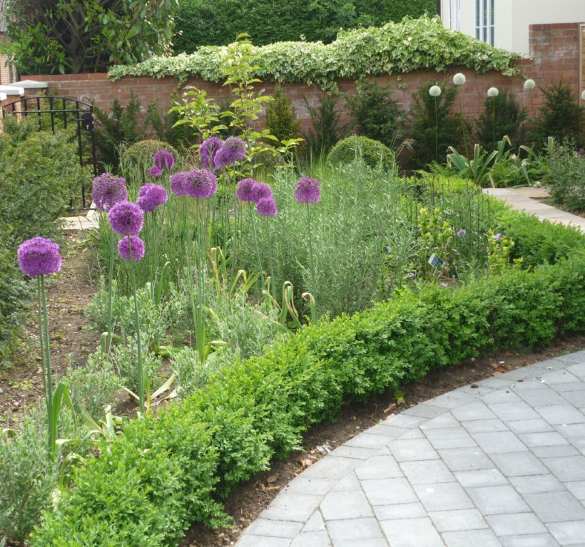 Front garden, Godmanchester six months after completion