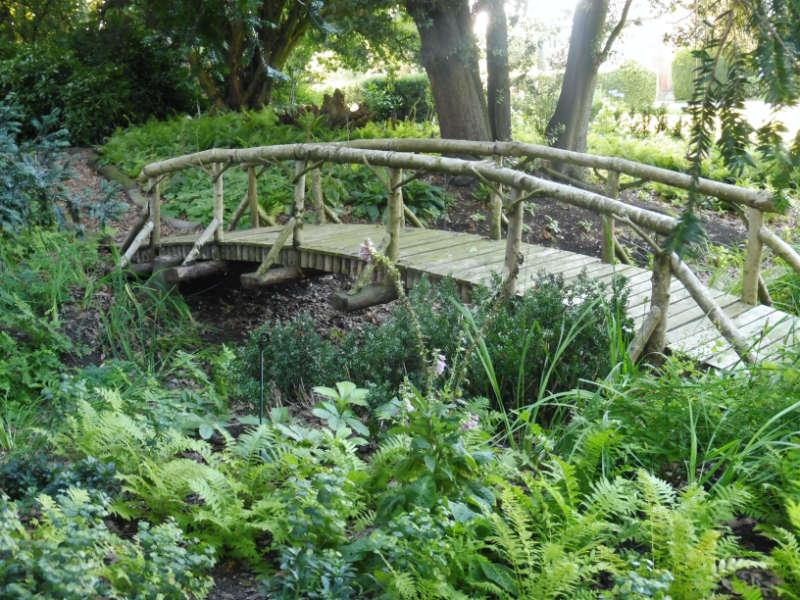 Woodland garden project Cambridgeshire
