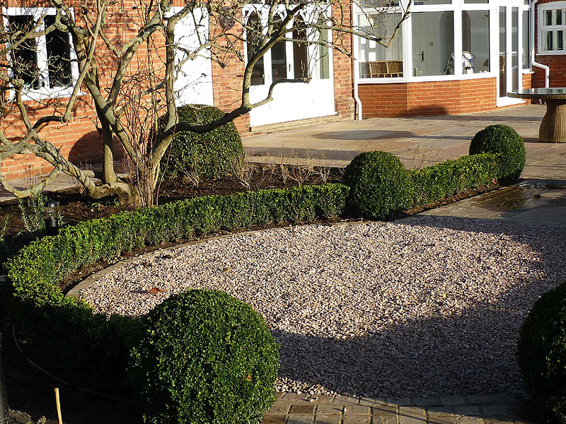 Topiary box hedging with spheres